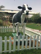 Dairy Museum